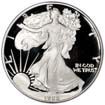 http://mainstreetcoin.com/wp-content/uploads/2014/07/silver-and-gold-american11.jpg